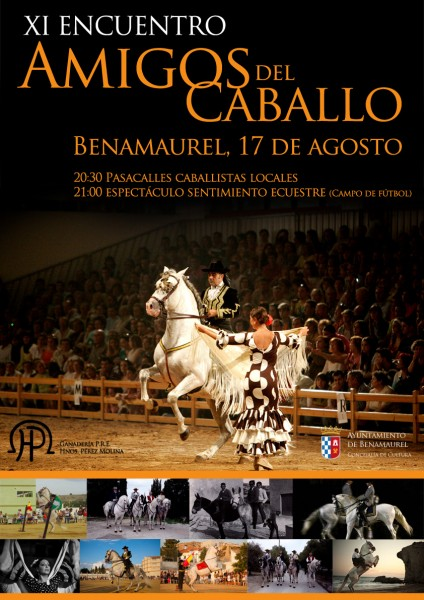 cartel-caballos-2014-opti