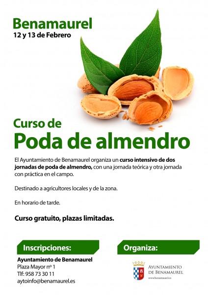 cartel-curso-almendro-benamaurel-web